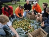 terra-nostra-6-10-2012-004